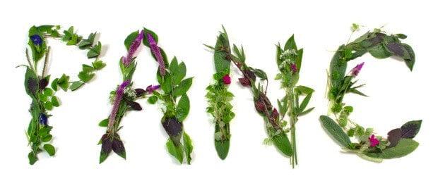 panc1 - Plantas Alimentícias Não Convencionais - PANC'S