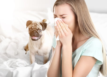 1 14 - Alergia a animais de estimação: como saber se sou alérgico?