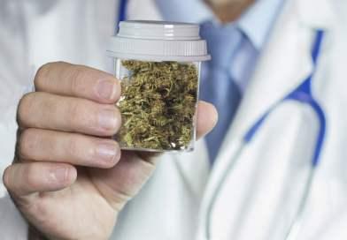 Maconha medicinal: quais doenças podem ser tratadas?