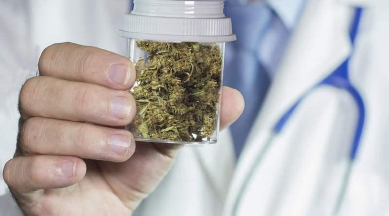 3 7 - Maconha medicinal: quais doenças podem ser tratadas?