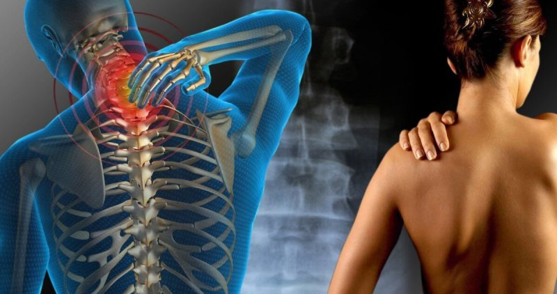 fonte da saude moringa caps FIBROMIALGIA 1024x540 - Moringa Caps - Médicos Descobrem Solução Natural Para Cansaço e Indisposição