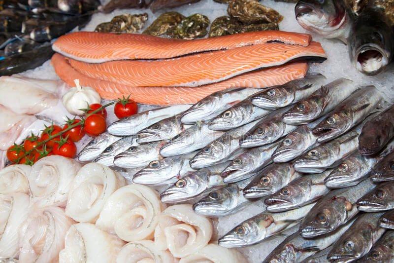 fonte da saude moringa caps peixes e frutos do mar - Descubra Agora Quais São os Alimentos Mais Ricos em Ferro