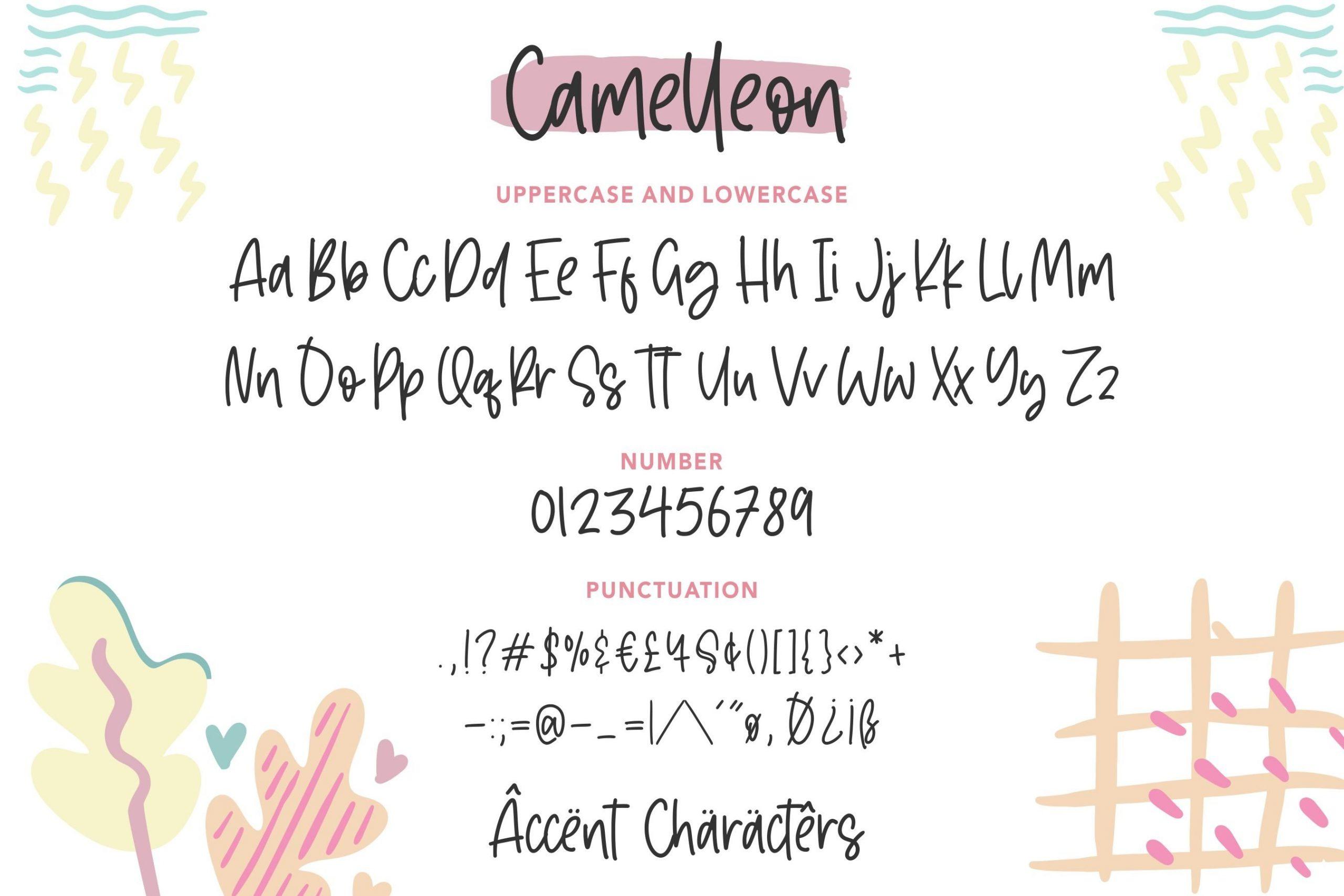 Camelleon6