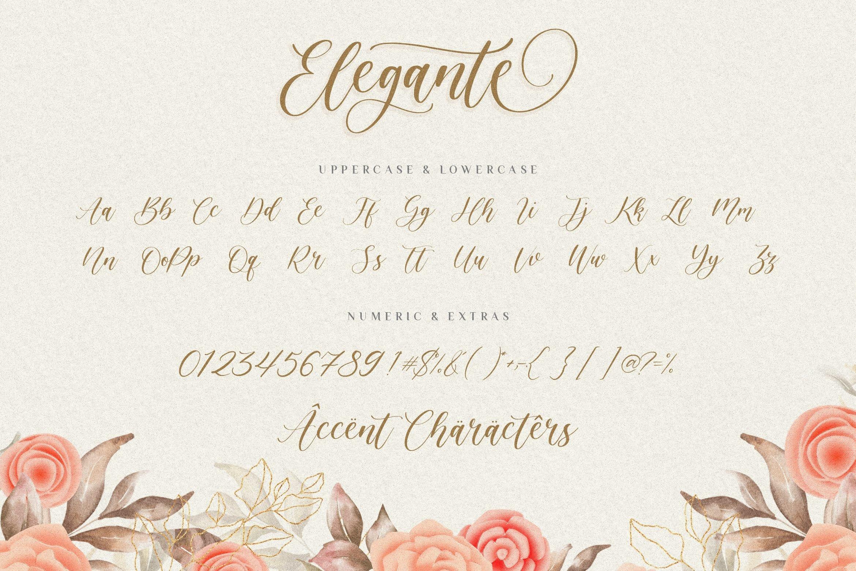 Elegante6