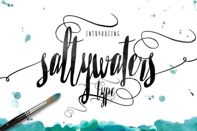 Saltywaters Type Script
