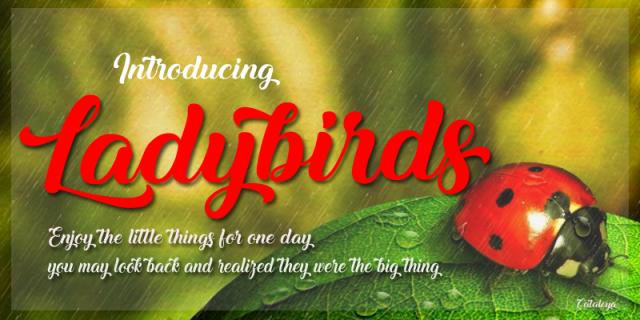 Ladybirds Script
