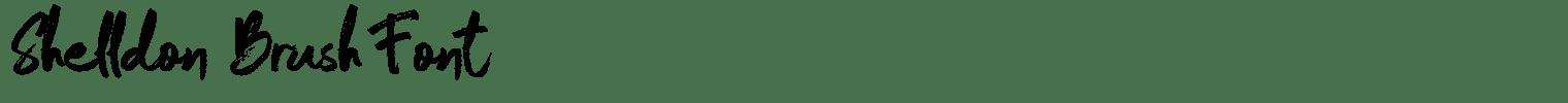 Shelldon Brush Font