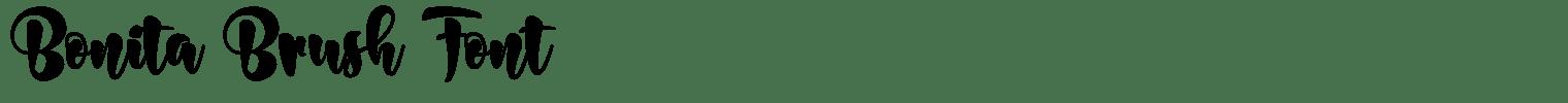 Bonita Brush Font