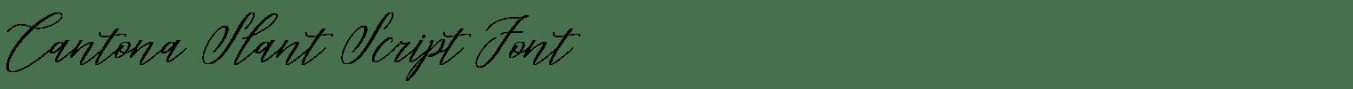 Cantona Slant Script Font