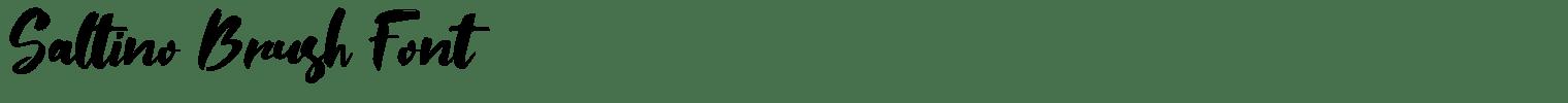 Saltino Brush Font