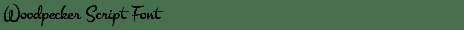 Woodpecker Script Font