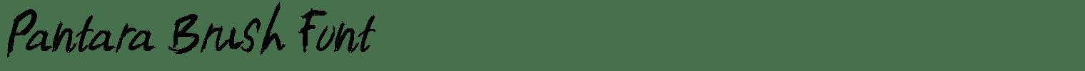 Pantara Brush Font