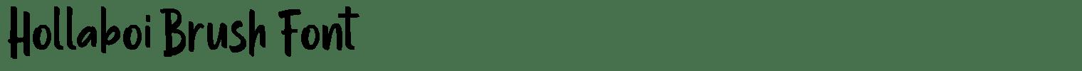 Hollaboi Brush Font