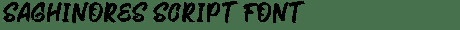 Saghinores Script Font