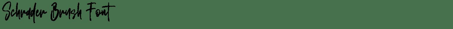 Schrader Brush Font