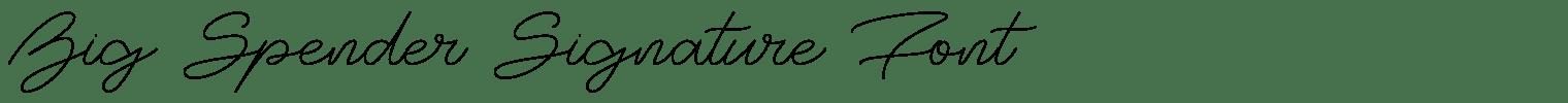 Big Spender Signature Font