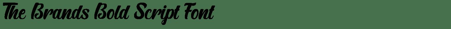The Brands Bold Script Font