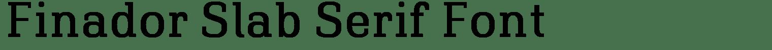 Finador Slab Serif Font