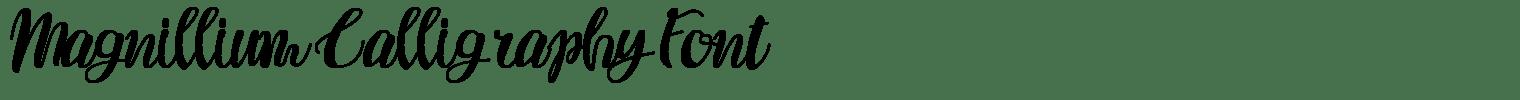 Magnillium Calligraphy Font