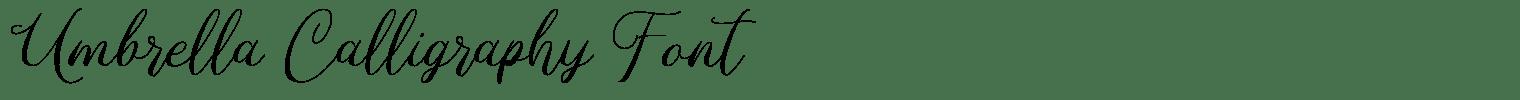Umbrella Calligraphy Font