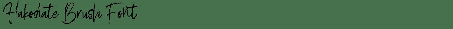 Hakodate Brush Font