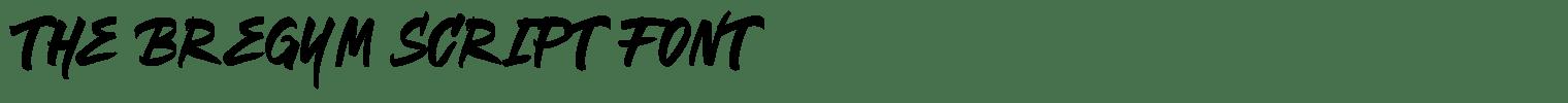The Bregym Script Font
