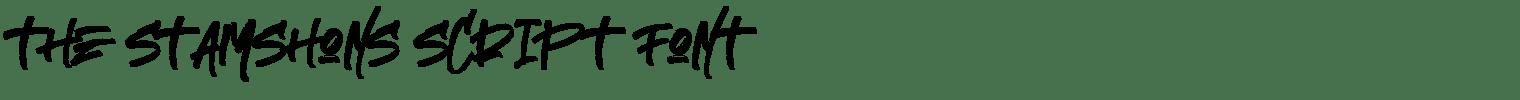The Stamshons Script Font