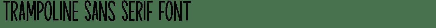 Trampoline Sans Serif Font