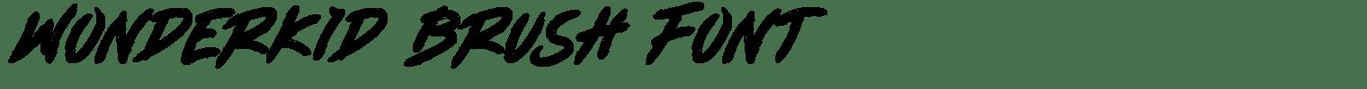 Wonderkid Brush Font