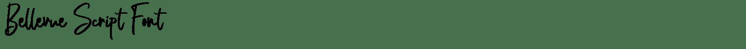 Bellevue Script Font