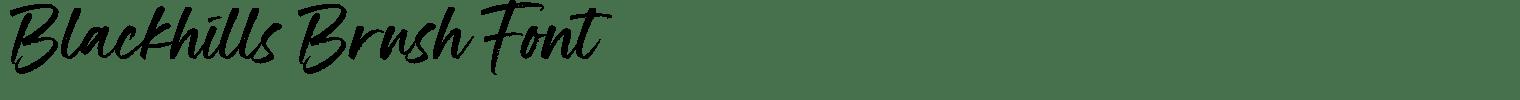 Blackhills Brush Font