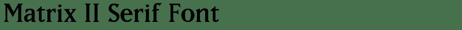 Matrix II Serif Font