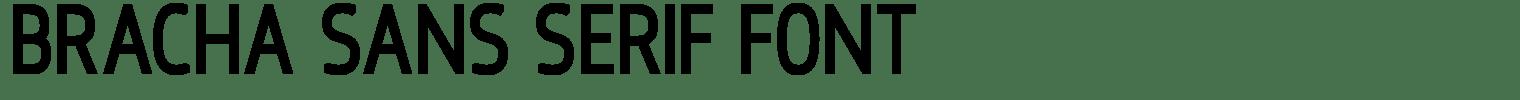 Bracha Sans Serif Font
