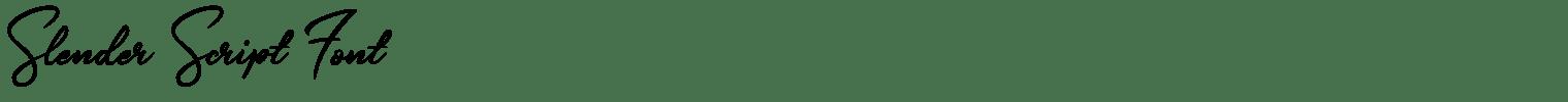 Slender Script Font