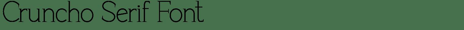 Cruncho Serif Font