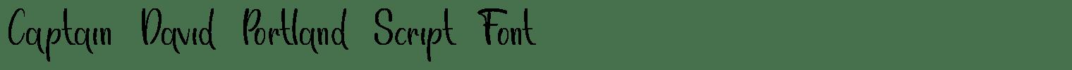 Captain David Portland Script Font