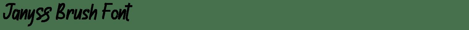Janyss Brush Font