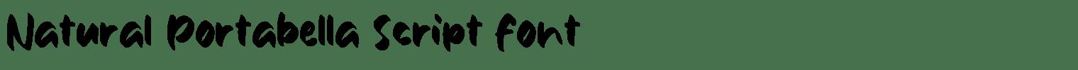 Natural Portabella Script Font