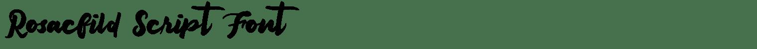 Rosacfild Script Font