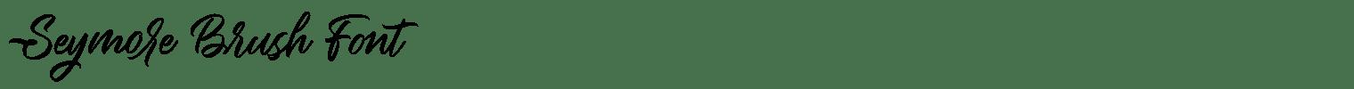 Seymore Brush Font