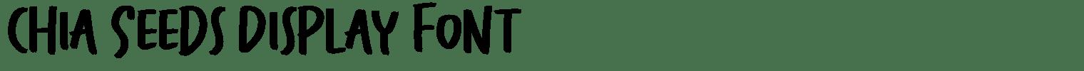 Chia Seeds Display Font