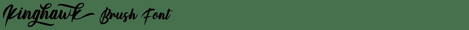 Kinghawk Brush Font