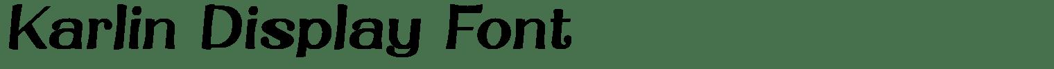 Karlin Display Font