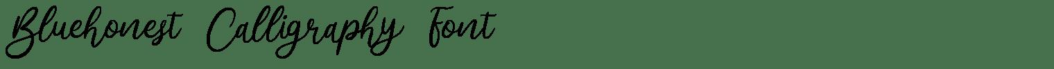 Bluehonest Calligraphy Font