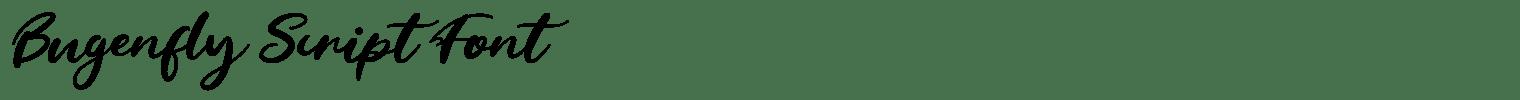 Bugenfly Script Font