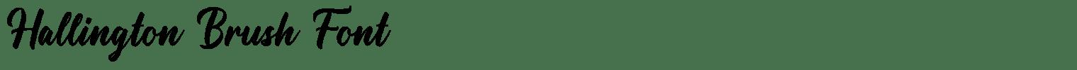 Hallington Brush Font
