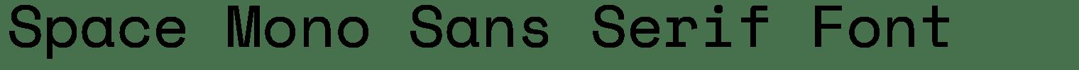 Space Mono Sans Serif Font