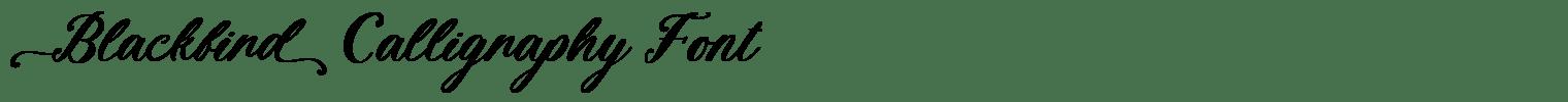 Blackbird Calligraphy Font