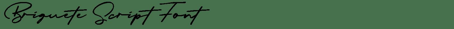Briquete Script Font