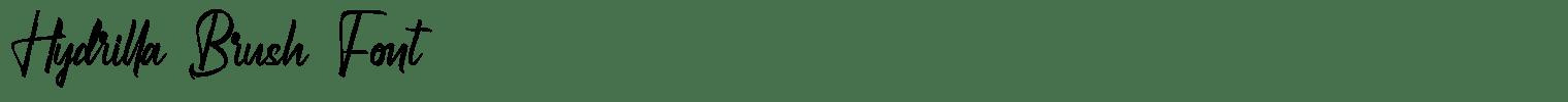 Hydrilla Brush Font